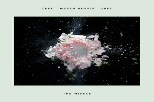 Zedd - The Middle
